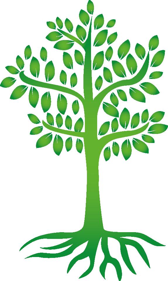 Naturheilpraxis-Lebenszeit_Baum_Darm_Lisa-Maria Harrer
