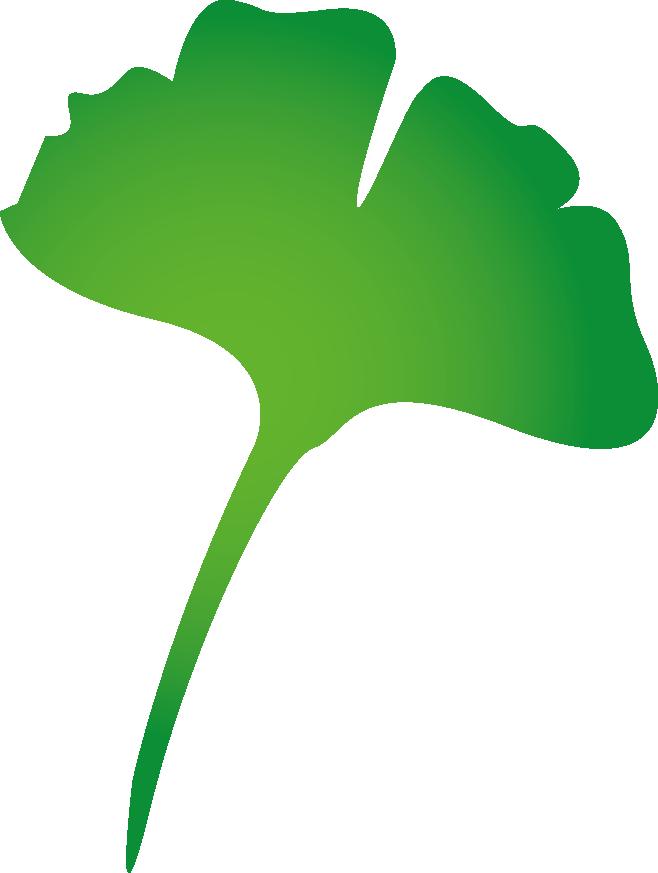 Naturheilpraxis-Lebenszeit_Schwerpunkte_Bioidentische_Hormone