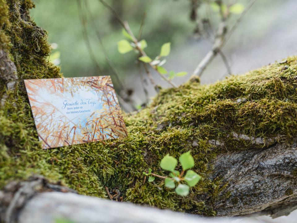 HPU_Naturheilpraxis_Lebenszeit_Lisa-Maria_Harrer